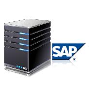 <span>SAP Hosting</span>